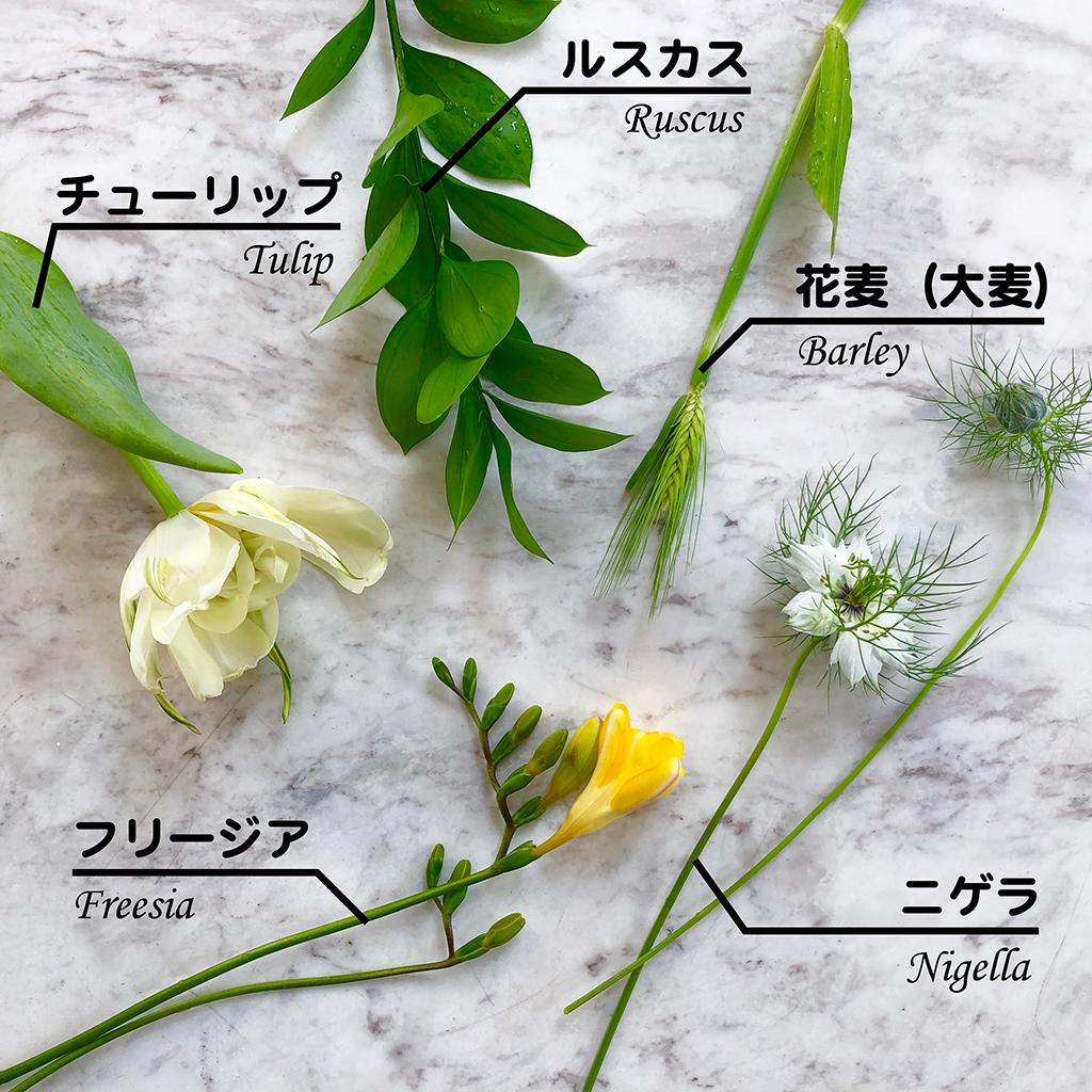 (1)花や草木の知識が増える