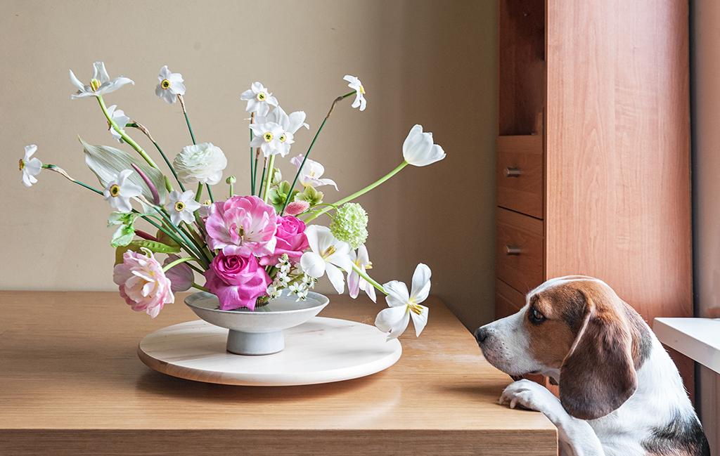日常にある生け花を楽しむきっかけは?