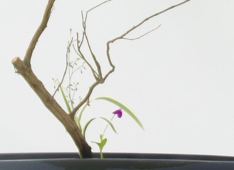 春のいけばな展閉幕&上野花展開催中