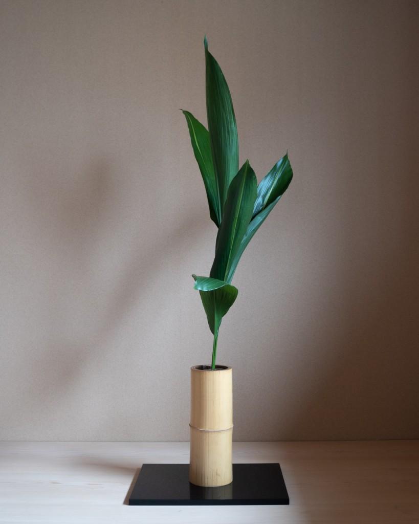 生花正風体 葉蘭